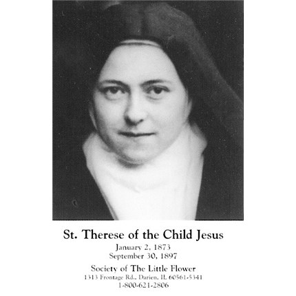 novena to st therese of lisieux for a rose